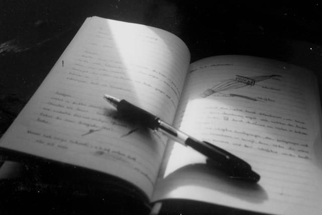 zis-Tagebuch/